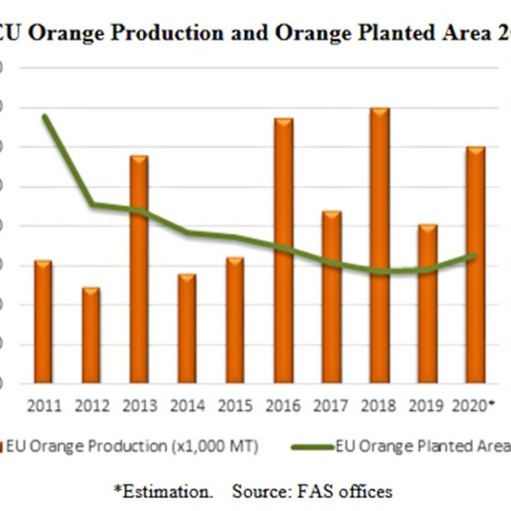 European citrus harvest to increase by 7.5% in 2020/21