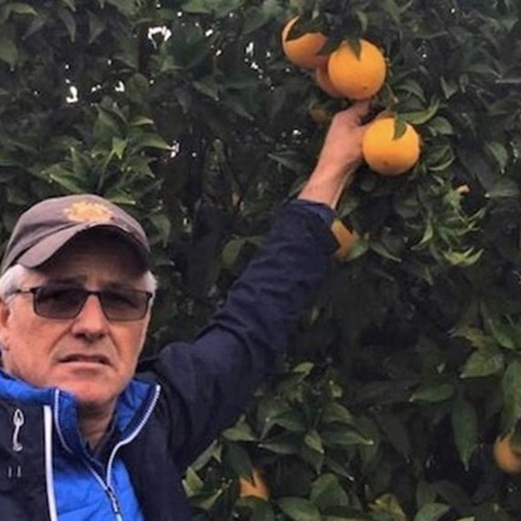 Citrus fruit demand exceeds supply