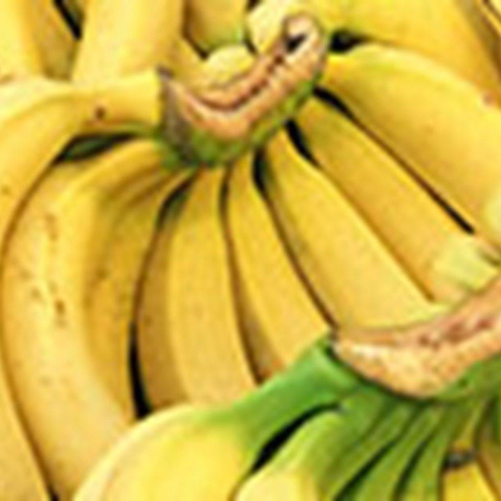 Banana exports Cameroon down by 8% in 2020