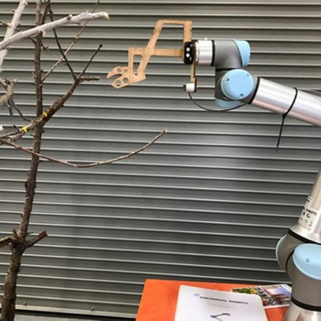WSU partners with Netherlands, Washington growers to improve orchard robotics & automation