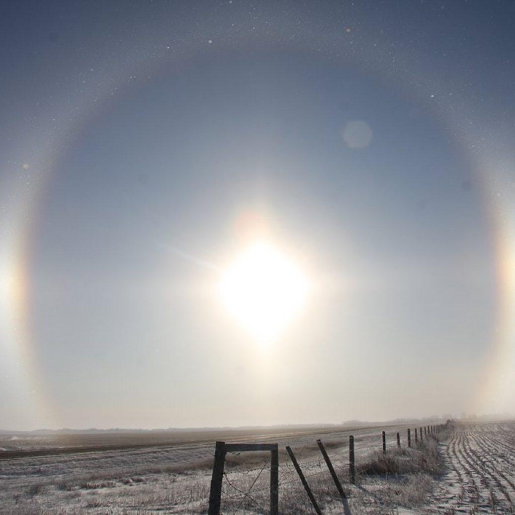 U.S. winter wheat crop faces danger