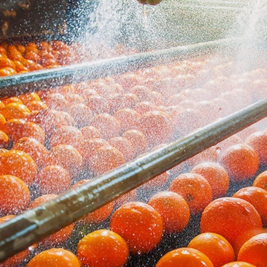 Creating an energy culture in food & beverage: A recipe for sustainable energy management