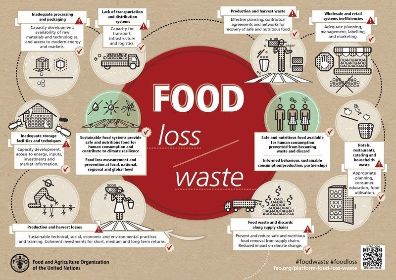 a diagram explaining where food waste is coming from