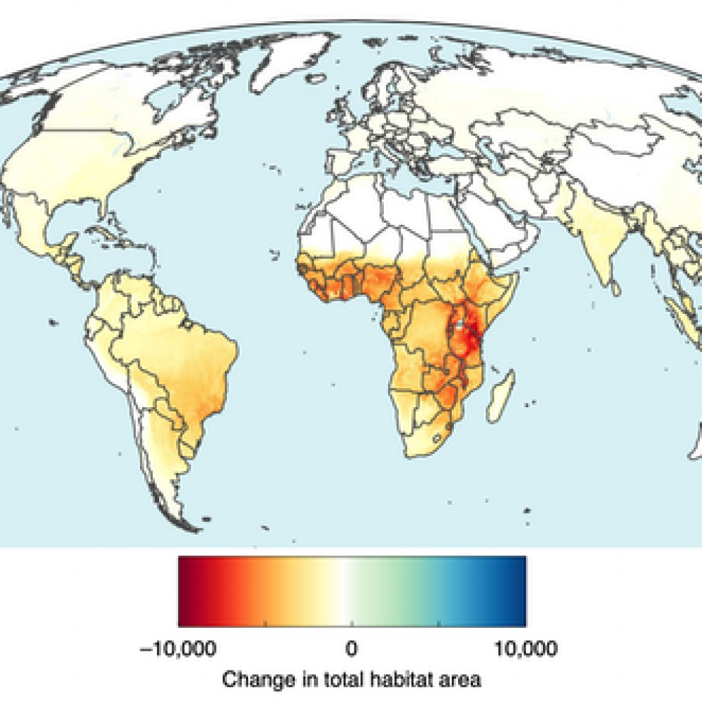 Projected changes in total habitat (mean habitat loss in a cell multiplied by the number of species present) caused by agriculture expansion by 2050. Note the concentrations in East and West Africa.