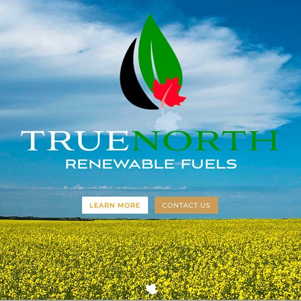 Proposed renewable diesel plant excites canola growers