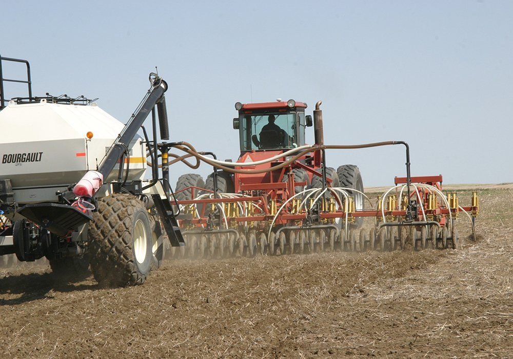 """""""The tight stocks scenario for canola continues well into next year and maybe the year after that,"""