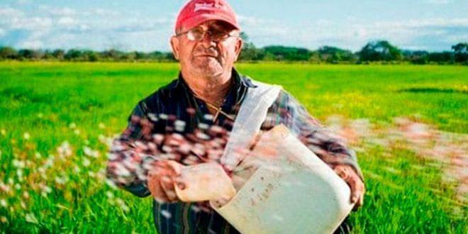 Food sector gets budget help but there are gaps