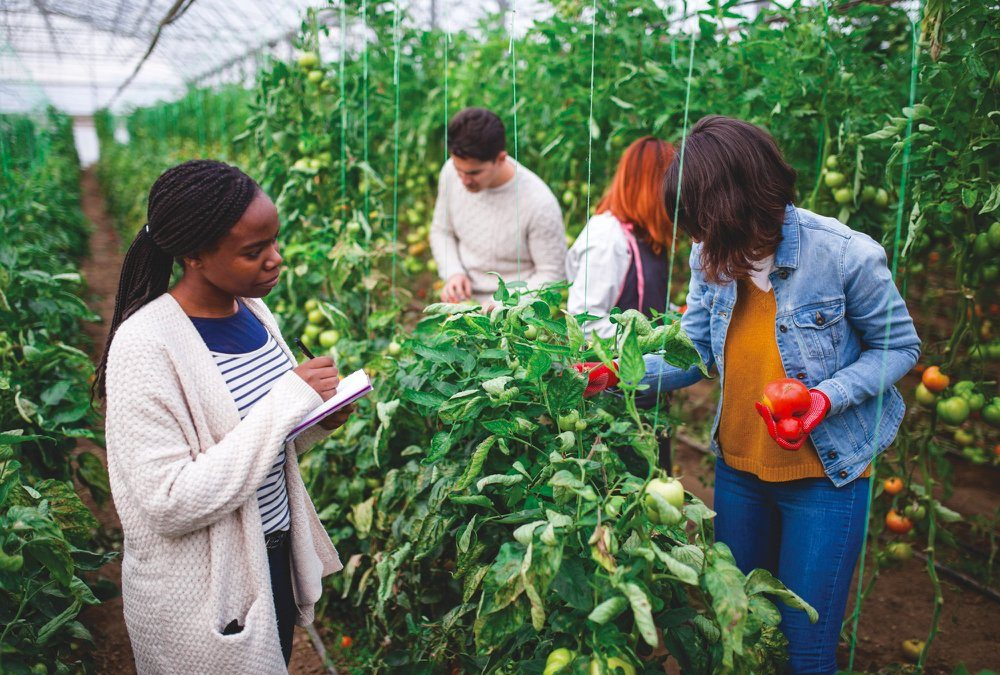 Agriculture education is needed to attract more people to the sector.