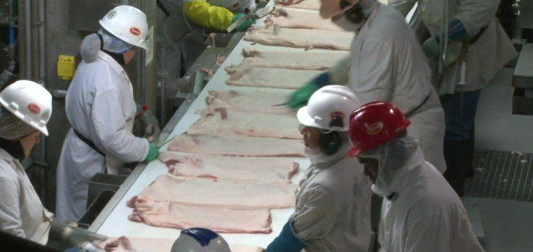 Pork line speed limits will return, court orders