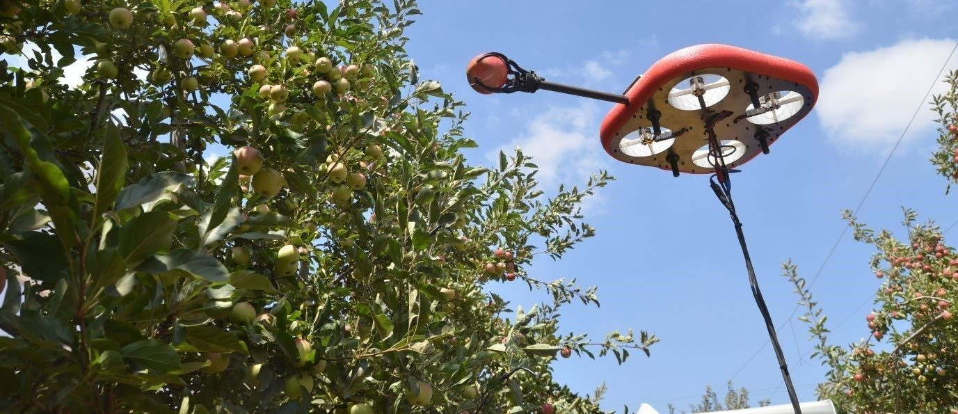 a picture of the flying autonomous robot picking fruit