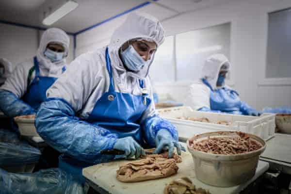 Workers processing foie gras and other duck products for Maison Lafitte in Castelnau-Montaut, south-west France.